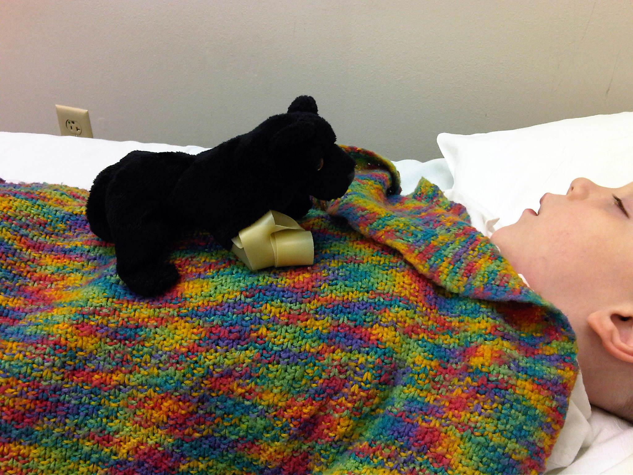 seizure alert dogs save lives liver seizure formula also has calming