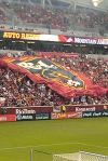 The huge Real Salt Lake flag going around the stadium.
