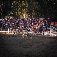 Strawberrry Days Rodeo 2013-3